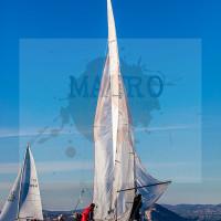 regataBardolino2015-1183