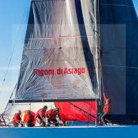regataBardolino2015-1210