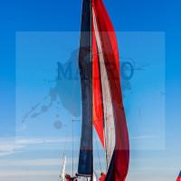 regataBardolino2015-1214