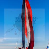 regataBardolino2015-1215
