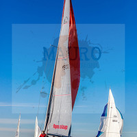 regataBardolino2015-1218