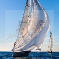 regataBardolino2015-1228