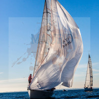 regataBardolino2015-1230