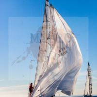 regataBardolino2015-1231
