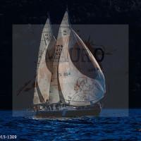 regataBardolino2015-1309
