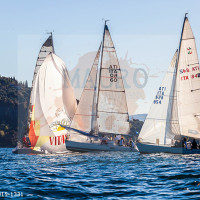 regataBardolino2015-1331