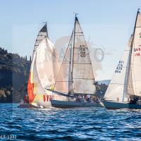 regataBardolino2015-1332