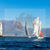 regataBardolino2015-1493