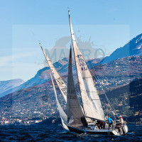regataBardolino2015-1566