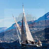 regataBardolino2015-1567