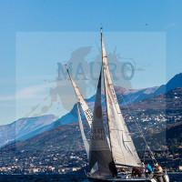 regataBardolino2015-1570