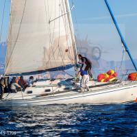 regataBardolino2015-1706