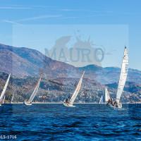 regataBardolino2015-1716