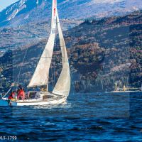 regataBardolino2015-1759