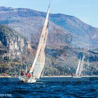 regataBardolino2015-1765