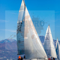 regataBardolino2015-1776