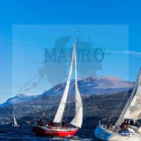regataBardolino2015-1801