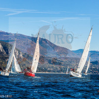 regataBardolino2015-1812