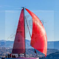 regataBardolino2015-1961
