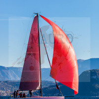 regataBardolino2015-1966