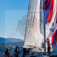 regataBardolino2015-1993