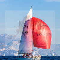 regataBardolino2015-2135