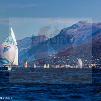 regataBardolino2015-2331