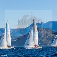 regataBardolino2015-2439