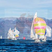 regataBardolino2015-2660