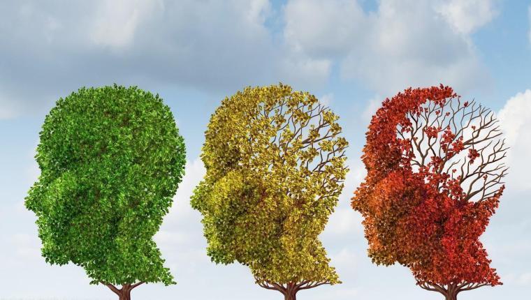 demenza-di-alzheimer-sintomi-terapie-cure-centro-phoenix
