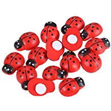 Coccinelle adesive 18mm