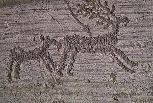 Gravure rupestre - Val Camonica