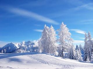 Il ciclo dell'anno e l'avvento del solstizio d'inverno
