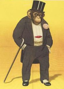 scimmia-col-gilet