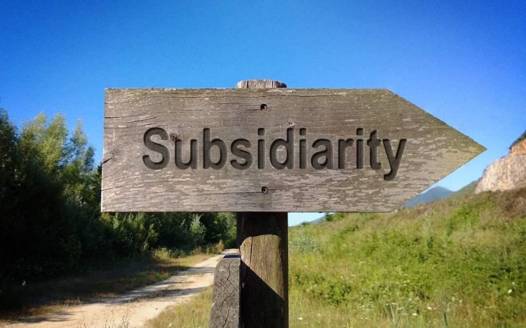La sussidiarietà come criterio di organizzazione  di una società libera e orientata al bene comune