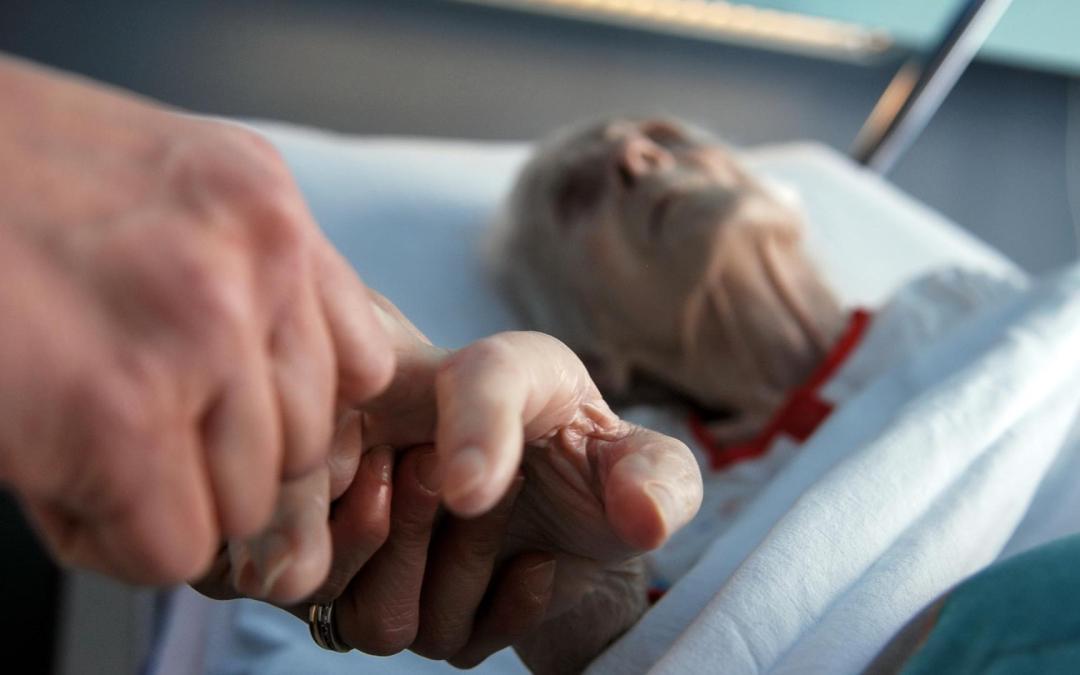 Appello per l'effettività delle cure palliative e il rispetto della professionalità medica