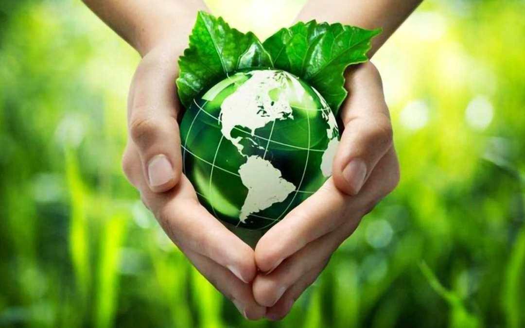 Ecologia ambientale ed ecologia umana, un ordine in pericolo