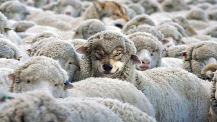 Ddl Zan, ovvero il lupo travestito da agnello