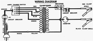 Snap Circuit Youtube  Auto Electrical Wiring Diagram