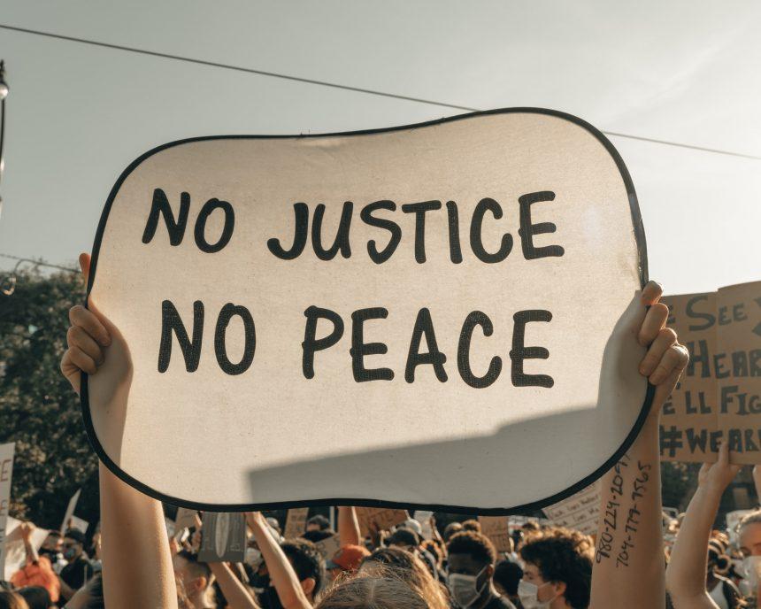Sudska zaštita u slučajevima masovnih povreda prava: naučne lekcije i izazovi