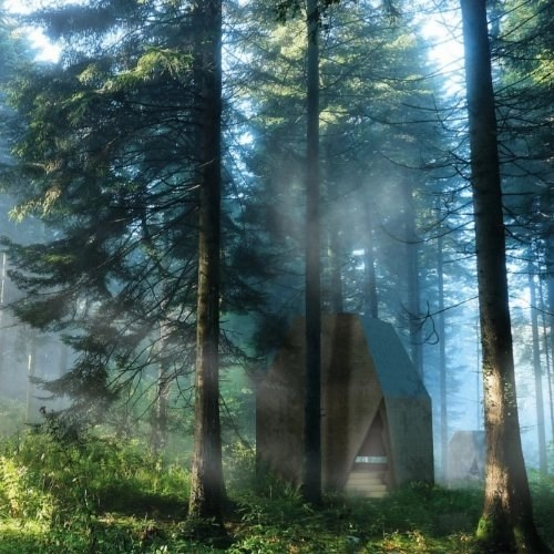 Ecofriendly Tiles Misty Forest