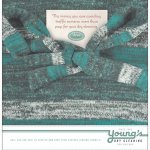 Young's - Dry - Cleaning - Web - Advertisement