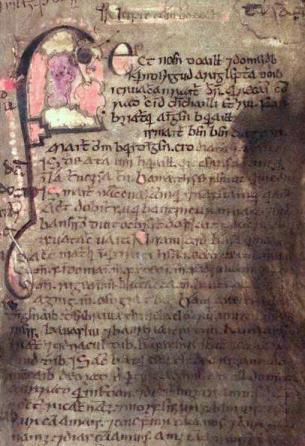 Pagina del Lebor Gabála Érenn contenuto nel Book of Leinster