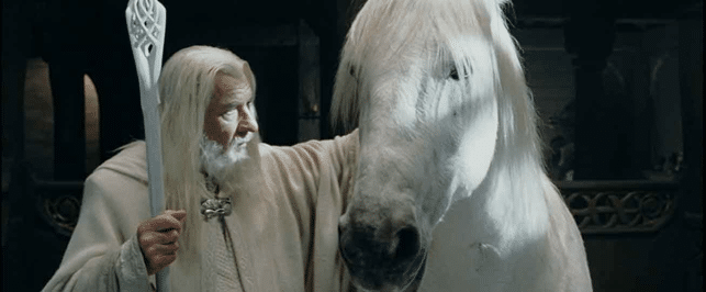 GAME OF THRONES – Teorie sul cavallo bianco