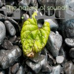 Cover: Mr. Moods - The Nature Of Sounds