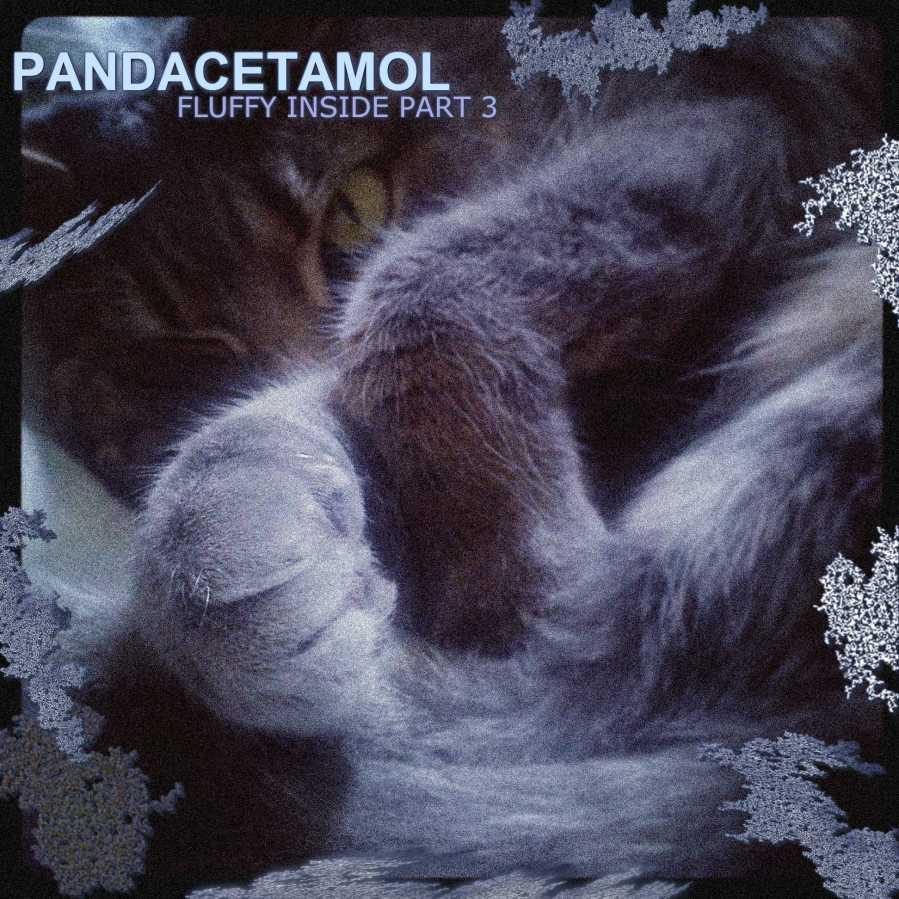 Pandacetamol: Fluffy Inside 3