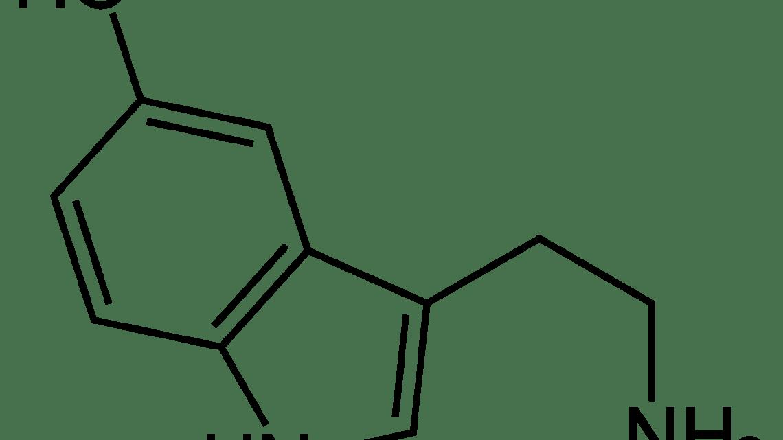 Happy Chemicals Serotonine