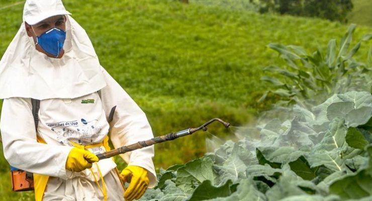 Equipo de protección agrícola: selección, mantenimiento y componentes
