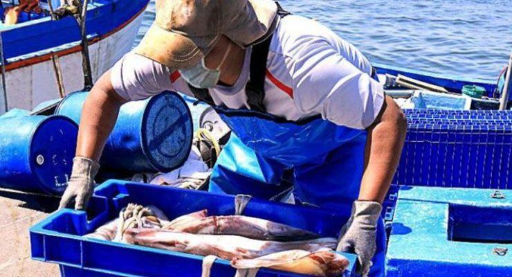 COVID-19: medidas de prevención en infraestructura pesquera