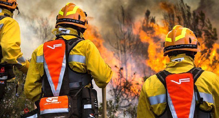 Cuáles son las partes de un incendio forestal